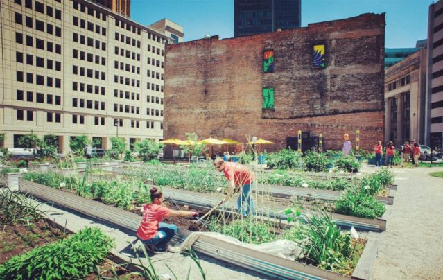 More than 1,500 community gardens have been started on vacant land in Detroit alone in recent years.